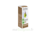 BOURGEONS CHATAIGNER VITAFLOR BIO, fl 15 ml à Mimizan