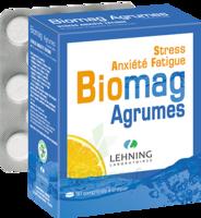 Lehning Biomag Comprimés à Croquer Agrumes B/90 à Mimizan