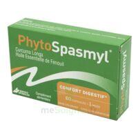 Phytospasmyl Caps B/60 à Mimizan