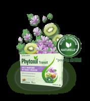 Phytoxil Transit Comprimés B/20 à Mimizan