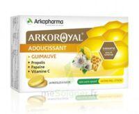 Arkoroyal Propolis Pastilles Adoucissante Gorge Guimauve Miel Citron B/24 à Mimizan