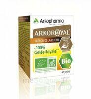 Arkoroyal 100% Gelée Royale Bio Gelée Pot/40g à Mimizan