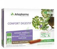 Arkofluide Bio Ultraextract Solution Buvable Confort Digestif 20 Ampoules/10ml à Mimizan