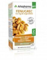 Arkogélules Fenugrec Bio Gélules Fl/40 à Mimizan