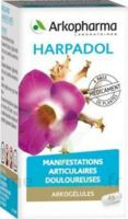 Arkogelules Harpagophyton Gélules Fl/150 à Mimizan