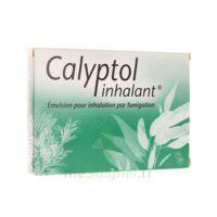 Calyptol Inhalant, émulsion Pour Inhalation Par Fumigation à Mimizan