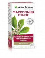 ARKOGELULES Marronnier d'Inde Gélules Fl/45