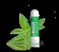 Puressentiel Respiratoire Inhaleur Respiratoire Aux 19 Huiles Essentielles - 1 Ml à Mimizan