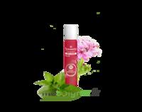 PURESSENTIEL ANTI-PIQUE Roller 11 huiles essentielles à Mimizan