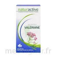 ELUSANES VALERIANE 200 mg, gélule Pilul/30 à Mimizan