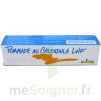 Calendula Lhf Pom T/20g à Mimizan