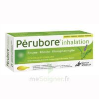 Perubore Caps Inhalation Par Vapeur Inhalation Plq/15 à Mimizan
