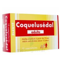 COQUELUSEDAL ADULTES, suppositoire à Mimizan