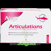 Nepenthes Articulations Bâtonnet B/60 à Mimizan