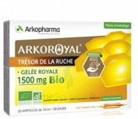 Arkoroyal Gelée Royale Bio 1500 Mg Solution Buvable 20 Ampoules/10ml à Mimizan