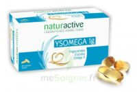 Ysomega 1 g Caps molle Plq/60 à Mimizan