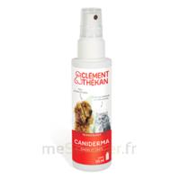 Clément Thékan Caniderma Solution externe cicatrisant Spray/125ml à Mimizan