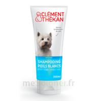 Clément Thékan Shampooing poils blancs T/200ml à Mimizan