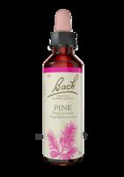 Fleurs De Bach® Original Pine - 20 Ml à Mimizan