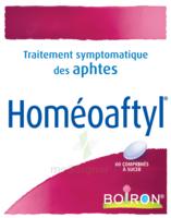 Boiron Homéoaftyl Comprimés à Mimizan