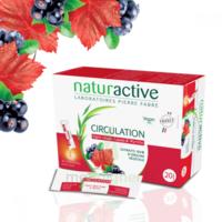 Naturactive Phytothérapie Fluides Solution Buvable Circulation 2b/20 Sticks/10ml à Mimizan