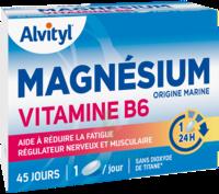 Govital Magnésium Vitamine B6 Comprimés B/45