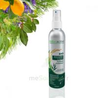 Assaini'spray Huiles essentielles BIO Fl/200ml à Mimizan