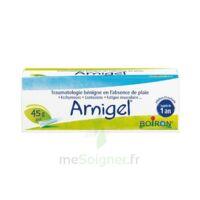 Boiron Arnigel Gel T(alumino-plastique)/45g à Mimizan