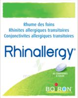 Boiron Rhinallergy Comprimés B/40 à Mimizan