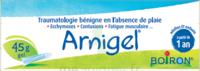 Boiron Arnigel Gel T/45g à Mimizan