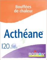 Boiron Acthéane Comprimés B/120 à Mimizan